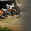 racingthursdays